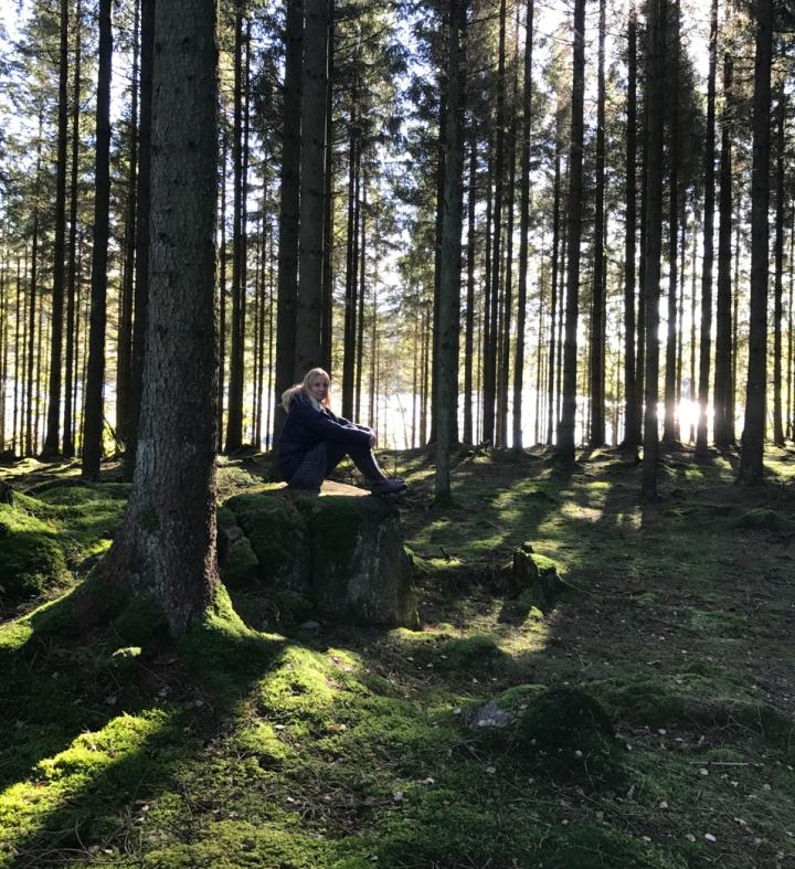 skogen_7865