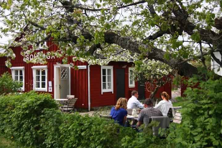 solhaga_fika_0890