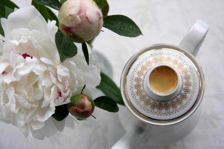 blomma_kanna_4358