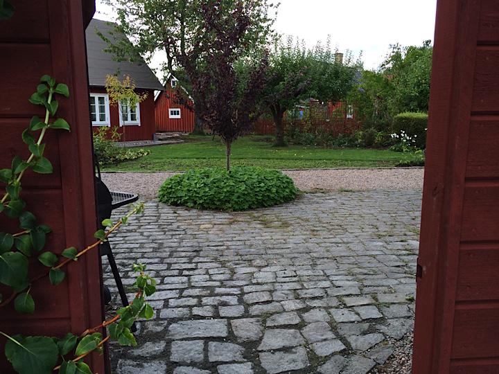 garden_2865