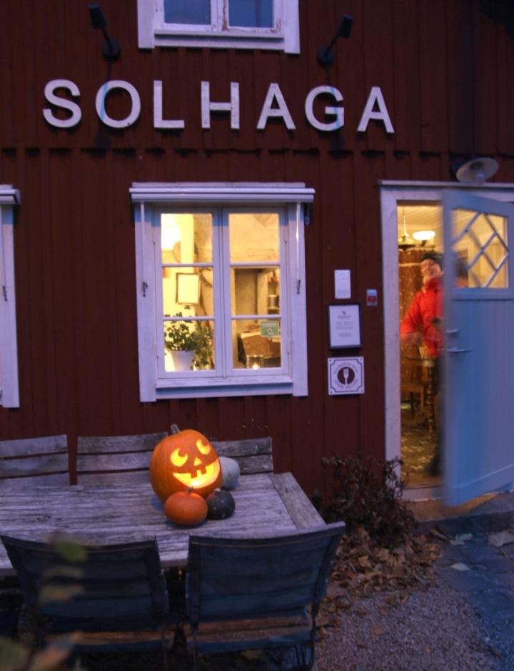 halloween6G8A4308