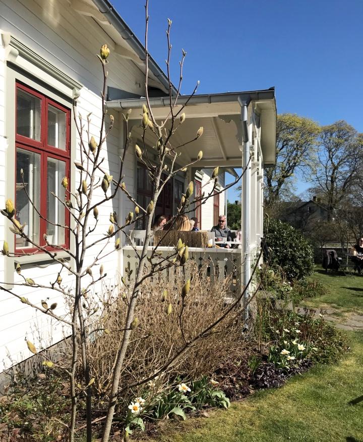 solhaga_magnolia_4002