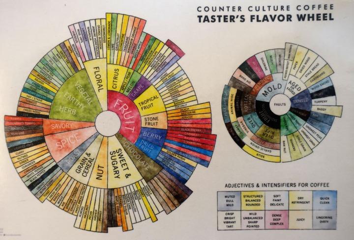 flavour_wheel